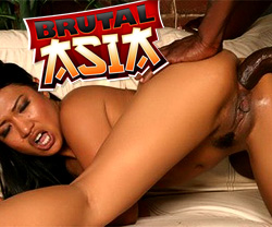 Free download video bokep Brutalasia